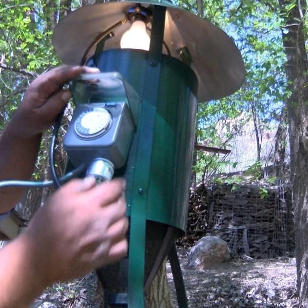 mosquito trap2_1459213029499.jpg