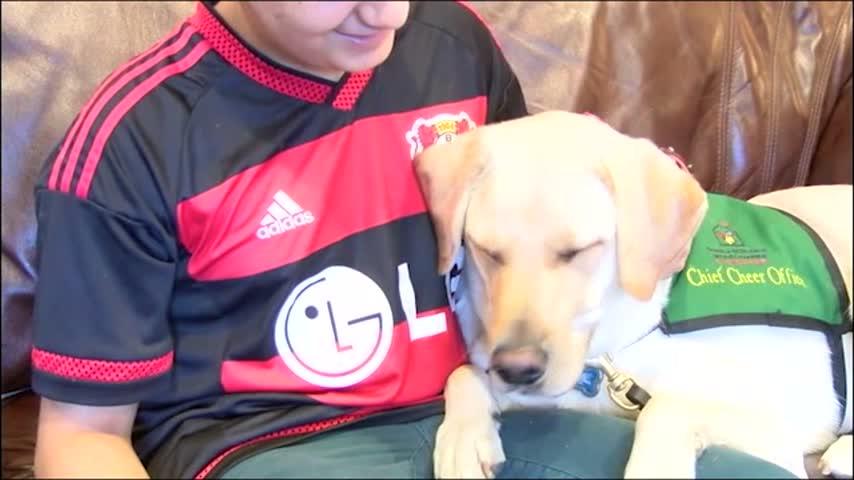 Save a Pet: Adopt-a-thon