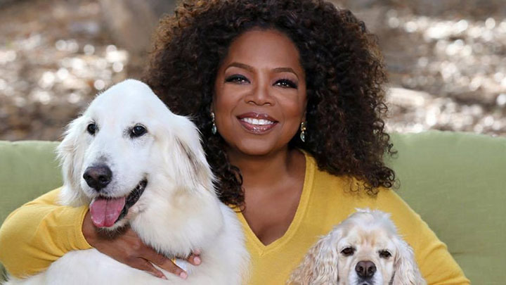 Oprah Winfrey Photo - 720