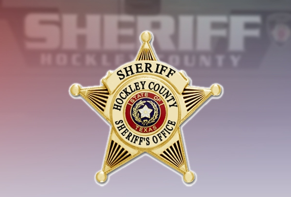Hockley County Sheriff Badge 720
