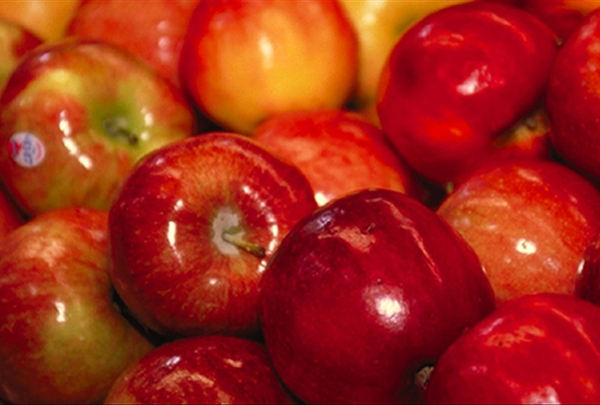 Photo of Apples - 720