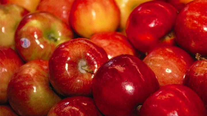 Photo of Apples - 720