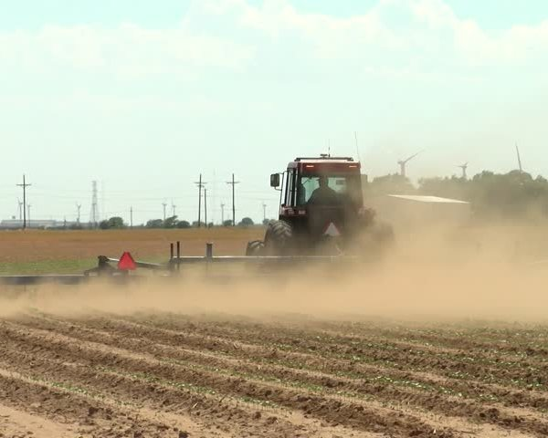 Visiting Farmers Learn from Local Cotton Farmers_73235618