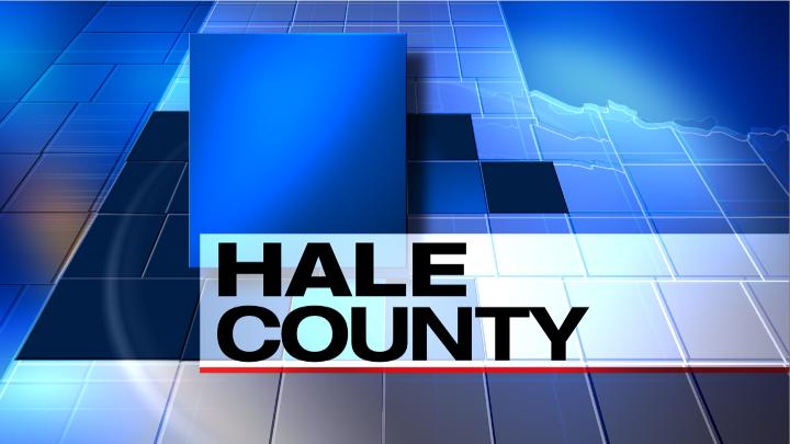 Hale County Stinger Map, KAMC Screen Capture - 720