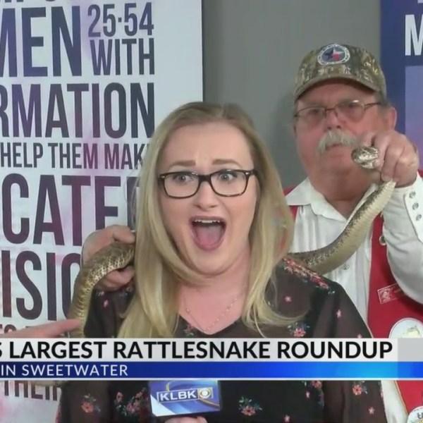 Rattlesnake_Roundup_0_20190226140730