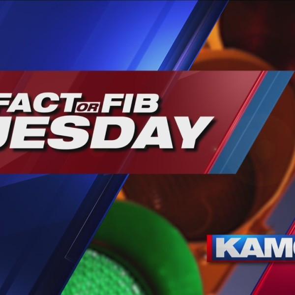 Fact_or_Fib_Tuesday_9_20190430180541