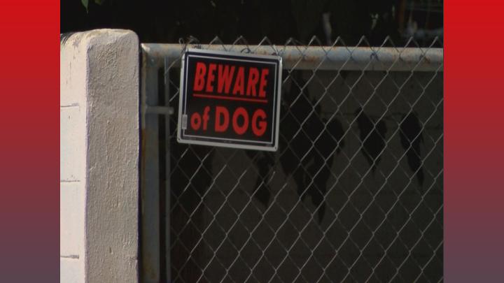 beware-of-dog-720_1436977597479.jpg