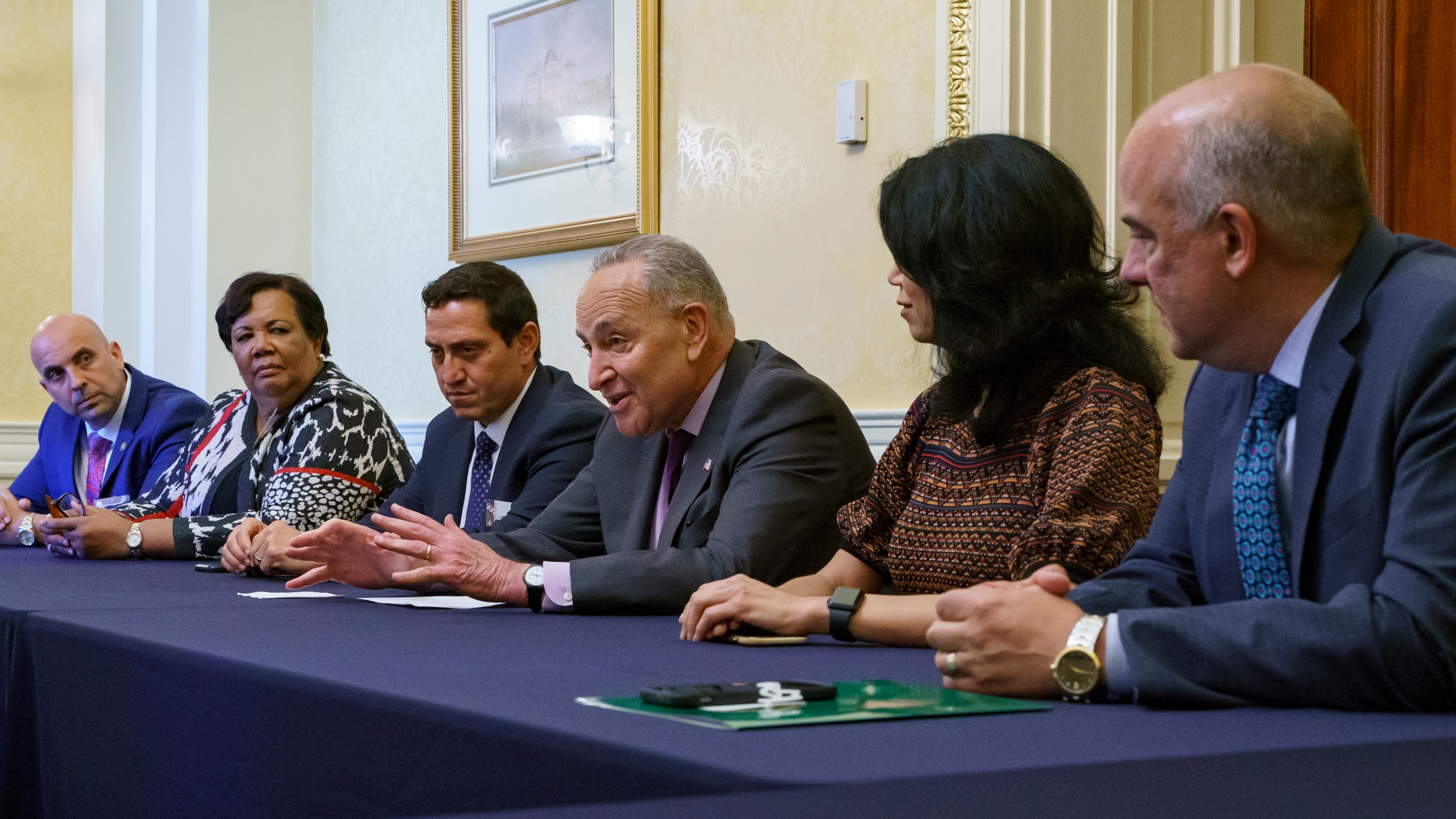 Chuck Schumer, Trey Martinez Fischer, Carol Alvarado